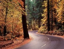 Rizika silničních staveb