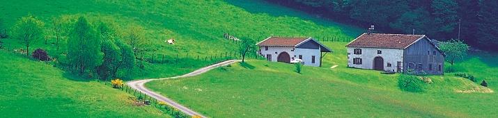 RD Znojmo-Louka
